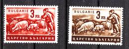 Bulgaria  -  1940. Pastore. Allevamento Pecore.  Shepherd. Sheep Breeding. MNH - Professioni