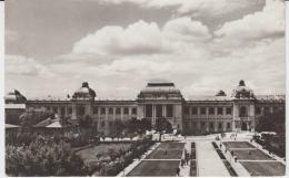 Iasi Circulated Postcard (ask For Verso / Demander Le Verso) University L'universite - Monuments