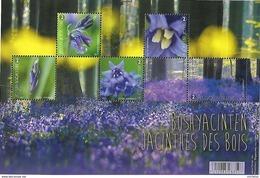 Belg. 2017 - COB N° BL 247 ** - Bois En Fleur ( Les Jacinthes Du Bois De Hal ) - Timbres 4672 à 4676 - Belgique