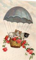 Vends Carte ' CHATS HUMANISES '   Saut En Parachute  (pittius ) - Katzen