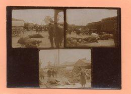 CARTE POSTALE MILITARIA - WWI - MONTAGE - 3 PHOTOS DE POILUS DEVANT CADAVRES DE CHEVAUX - TRAIN - USINE - War 1914-18