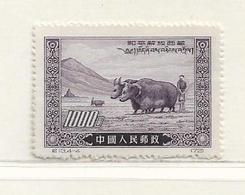 CHINE   ( AS - 56 )   1952  N° YVERT ET TELLIER  N° 970  N** - 1949 - ... Volksrepublik