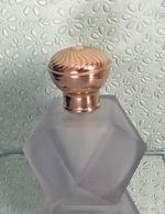 """Flacon Rechargeable """"BLEU """" De L'ARTISAN PARFUMEUR 130 Ml En Verre Givré VIDE Pour Collection Ou Décoration - Bottles (empty)"""