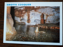L8/38 Grotte Cosquer - Unclassified