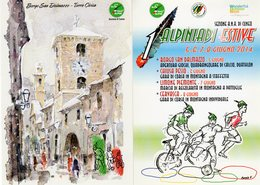 Borgo S. Dalmazio (CN) - Sez. A.N.A. Cuneo - 1° Alpiniadi Estive 2014 - - Patriottiche
