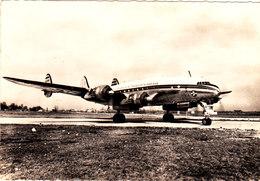 Un CONSTELLATION AIR ALGERIE Belle CPSM 15X10.5 Bon état Voir Scans - 1946-....: Ere Moderne