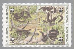 WWF SNAKES, MOLDOVA 1993  BLOC 4, MNH - Unused Stamps