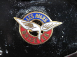 PINS  LES AILES BRISEES Anciens Combattants Et Blessés De L'armée Aérienne  T.B.E. - Militaria