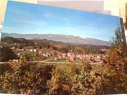 MONTAGNANA DI PINE E DOLOMITI DEL BRENTA  VB1970 GW4471 - Trento