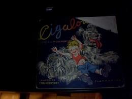 Live Jeunesse  Illustré  De 1939 Quand Cigalou S En Va  Dans La Montagne  Album Du Pere Castor Edition Flamarion - Bücher, Zeitschriften, Comics