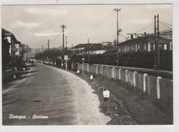Cartolina - Bistagno - Stazione - Stations - Met Treinen