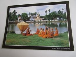 Teach Novices. DK Arts 2888161 - Thaïlande
