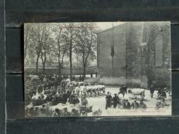 Z26 - 09 -  St Girons - Marché Aux Boeufs - Edition Labouche - 1905 - Saint Girons