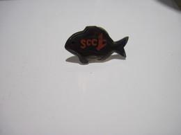 PINS  SCC  POISSON   T.B.E. - Diving