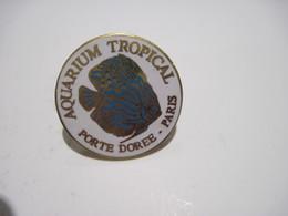 PINS  ACQUARIUM TROPICAL PARIS PORTE DOREE    T.B.E. - Dieren