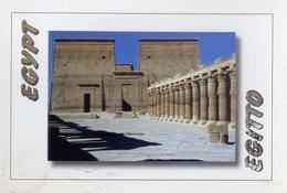 Egypt - Egitto - Formato Grande Viaggiata – E 7 - Egitto