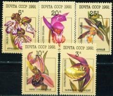Russia, USSR, 1991, Mi. 6192-96, Y&T 5851-55, Sc. 5994-98, SG 6247-51, Flowers, Orchids, MNH - 1923-1991 USSR