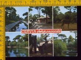 Ravenna Cervia - Ravenna