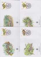 World Wide Fund For Nature 2005 British Virgin Islands -Tree Boa ,Set 4 Official First Day Covers - FDC
