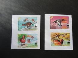 Azerbaijan 2000  PROOF Imperforated WWF Ducks MNH - W.W.F.