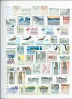 FEROE + GROENLAND. Lot Sur 6 Pages, 90% De Neufs Sans Charnières. Départ 1 €. - Stamps