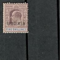 BAHAMAS1902:Michel28(Scott42)mh* SPECIMEN - 1859-1963 Kronenkolonie