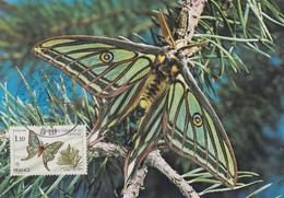 Carte  Maximum  1er  Jour   FRANCE   Papillon   1980 - Cartes-Maximum