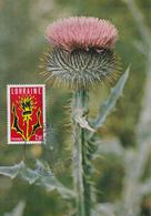 Carte  Maximum  1er  Jour   FRANCE     Région  :   LORRAINE      METZ  Et  NANCY   1979 - Cartes-Maximum