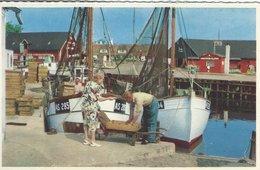 Fishing Boats In Port. Ballen Havn.  Samsø  Denmark.   S-4445 - Fishing Boats
