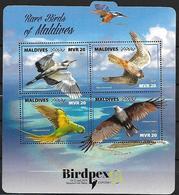 Maldives 2018 - BIRDPEX 8 - Rare Birds  : Ardea Melanocephala - Falco Amurensis -Psittacula Krameri - Haliastur Indus - Andere