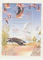 Kazakhstan 2006 Nat.Park-Bird-Badger (3) SHEET UM - Kazajstán