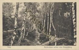 Velp - Berkenlaan Achter Den Pinkenberg  [E1419 - Velp / Rozendaal