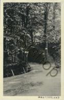 Montferland  [E2410 - Autres