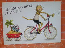 GATTO IN BICICLETTA CHAT CAT  CARTOLINA - Humor