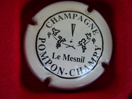 *  Capsule De Champagne  POMPON CHAMPY  N° 13 * - Unclassified