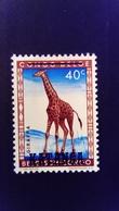 Katanga 1960 Girafe Giraffe Congo Belge Surchargé Overprint Yvert 8 ** MNH - Katanga