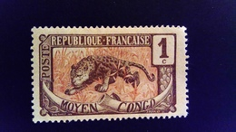 Moyen Congo 1907 Panthere Panther Yvert 48 * MH - Katanga