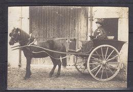 26 MONTELIMAR CARTE PHOTO DECOUPEE 12*8cm VERSO MONTELIMAR 25.10.1916 - Montelimar