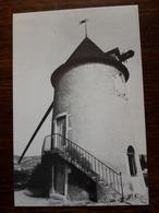 Chenas. Le Moulin à Vent - Chenas