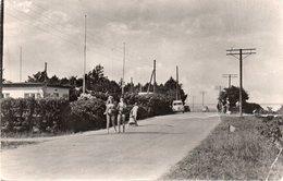 DANMARK-MALLING-AJSTRUP STRAND-1960 - Danimarca