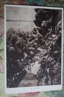 KOREA NORTH 1950s  Postcard - Pyongyang  - Chungryoo Cliff - Korea, North