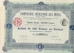COMPAGNIE IBERIENNE DES MINES - ACTION DE 100 FRS -DIVISE EN 6000 ACTIONS  -ANNEE 1902 - Mines