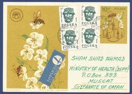 POLSKA USED POSTCARD POST CARD FLOWER FLOWER TO OMAN   AS PER SCAN - Postcards