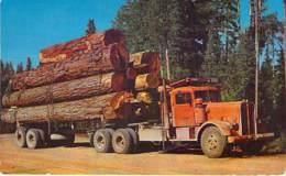 ** USA Etats-Unis - American Truck Carrying Logs / Camion Américain De Transport De Billes De Bois -CPSM PF 1964 - - Etats-Unis