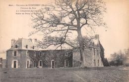 56-CHATEAU DU ROX ENVIRONS DE CONCORET-N°R2132-D/0285 - France