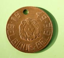"""Jeton De Taxe Sur Les Chiens """"Année 1949 - Belgique / Belgie"""" Médaille De Chien - Professionals / Firms"""