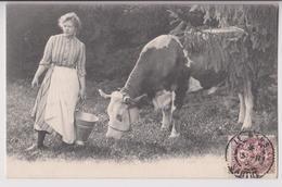 CARTE PHOTO D'UNE VACHE LAITIERE ET DE LA FERMIERE - ECRITE DU MANS EN 1903 - 2 SCANS - - Fermes