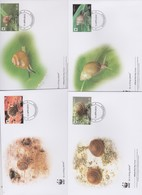 World Wide Fund For Nature  2012 Rarotonga- Snails , Set 4 Official First Day Covers - FDC