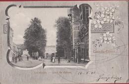Temse Temsche Tamise Kasteelplein Place Du Chateau 1903 ZELDZAAM (In Zeer Goede Staat) - Temse