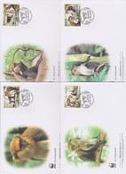World Wide Fund For Nature 2013 Guinea Bissau -Cercopithecus Campbell , Set 4 Official First Day Covers - FDC